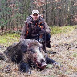 polowania na dziki w polsce